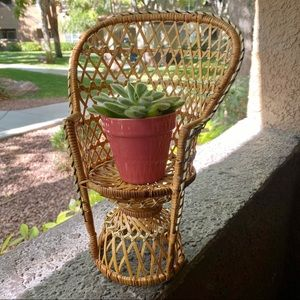 Mini wicker peacock chair plant stand